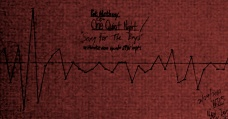 Pat Metheny - Song For The Boys - ONE QUIET NIGHT - rose_speed_chart